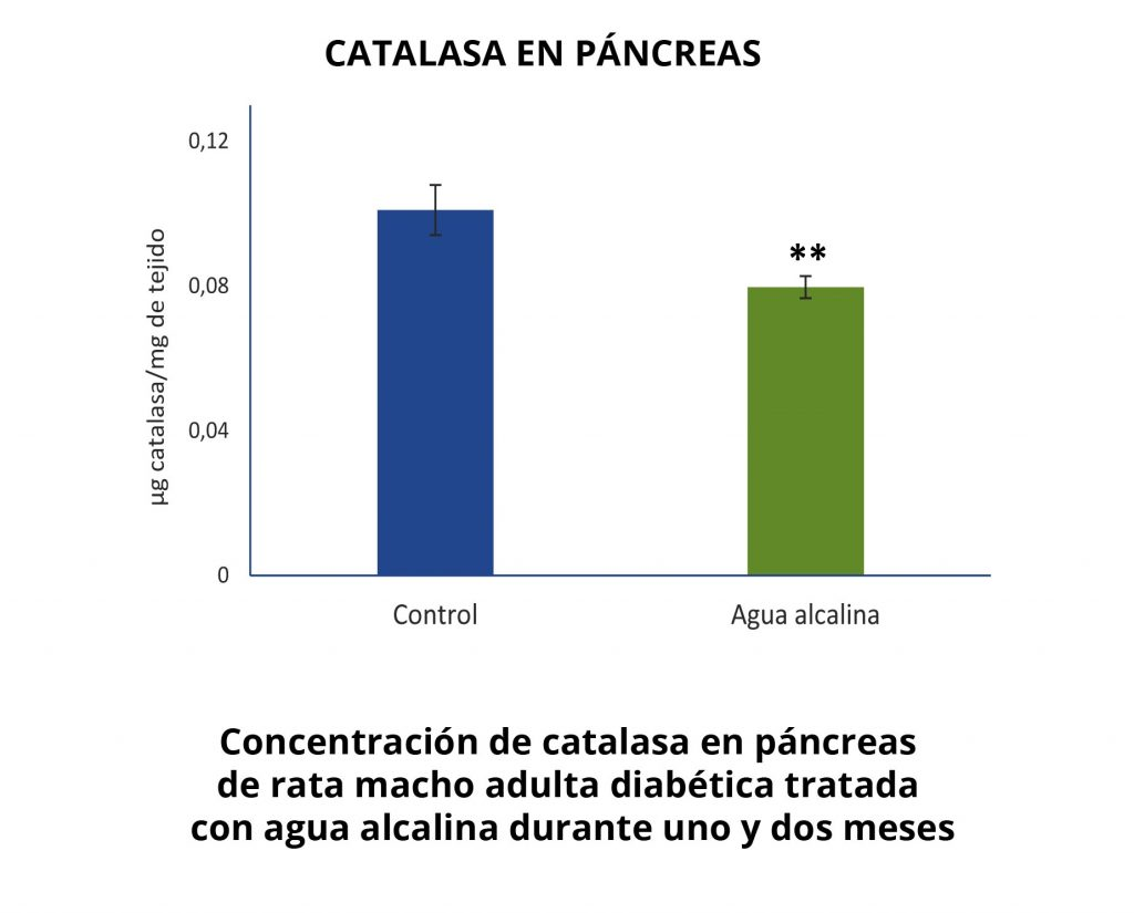 catalasa en pancreas
